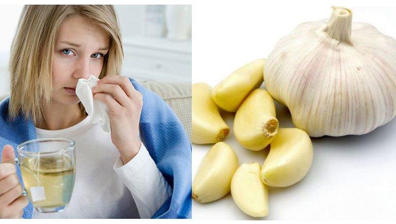 Tỏi giúp điều trị các bệnh cảm cúm